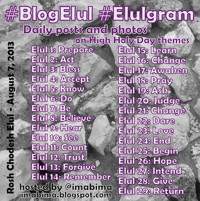 blogelul2013